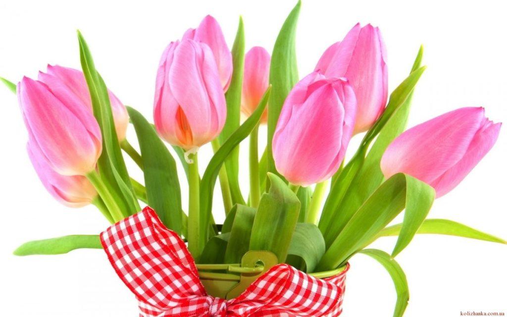Цікаві факти та історія свята 8 березня !