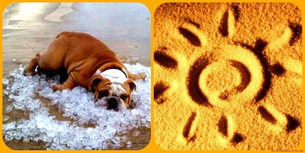 Як перенести літню спеку. 6 порад