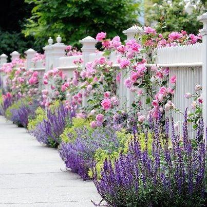 Квітники під парканом та навколо дому 25 оригінальних ідей (3)