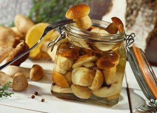 Маринованные белые грибы простой рецепт