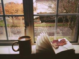 5 книжок з найкращими осінніми історіями