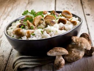 Білі гриби: 8 рецептів приготування смачних страв з фото